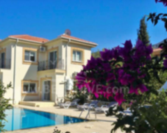 4 bedroom long term rental catalkoy bees