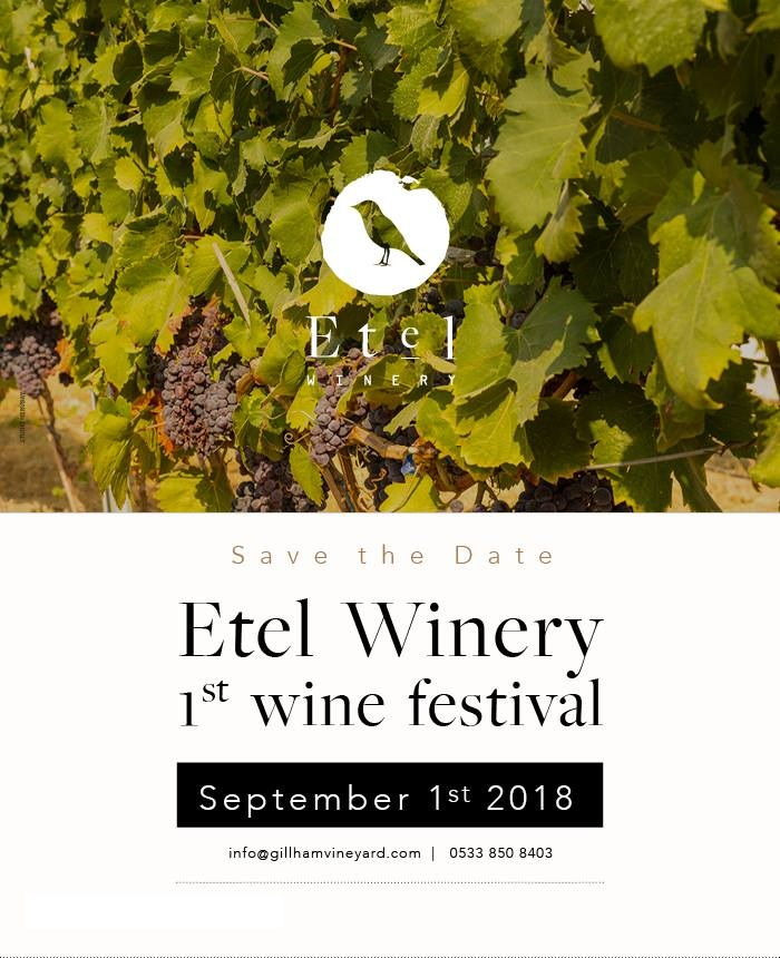 Etel Wine Festival North Cyprus