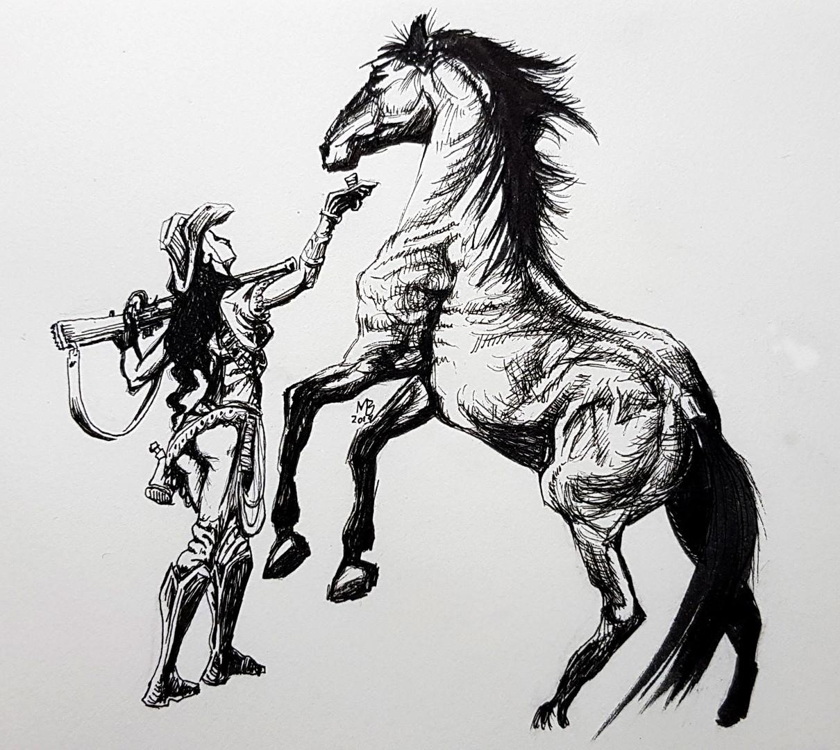 Cowgirl-feeding-horse.jpg