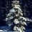 Thumbnail: white christmas