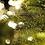 Thumbnail: christmas tree
