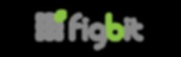 企業情報 | フィグビット株式会社