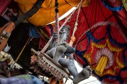 Naga on the swing
