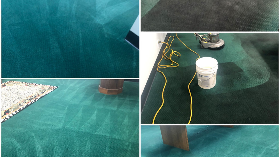 Carpet Cleaning Special  Only $60