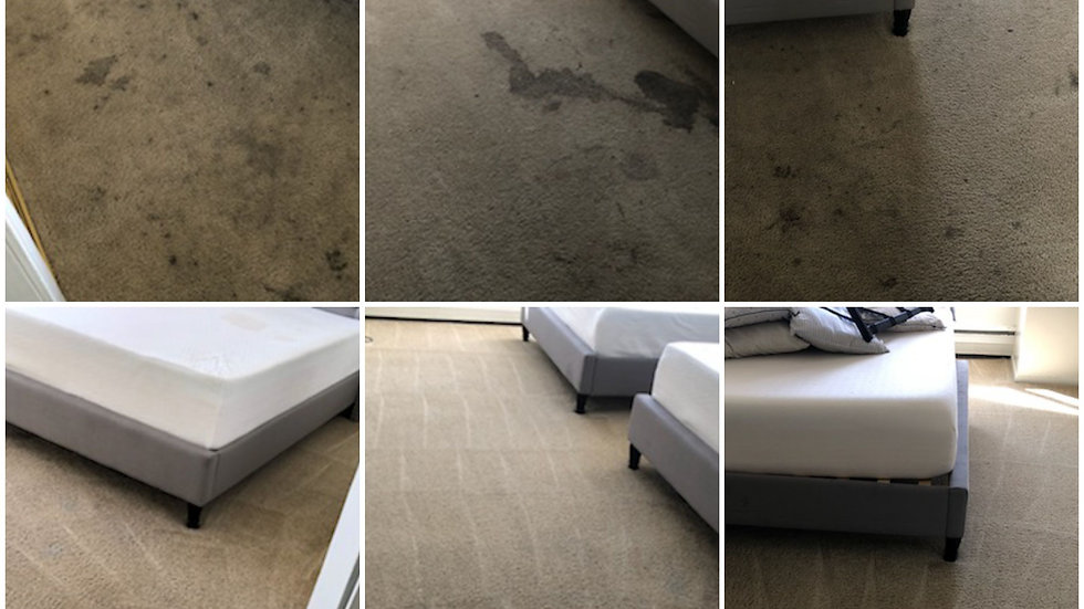 Special: Clean 3 Areas Only $115