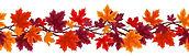 autumn divider line.jpg