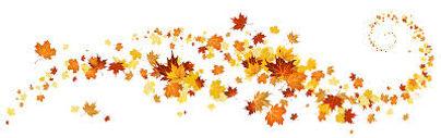 Fall Leaves Swirl