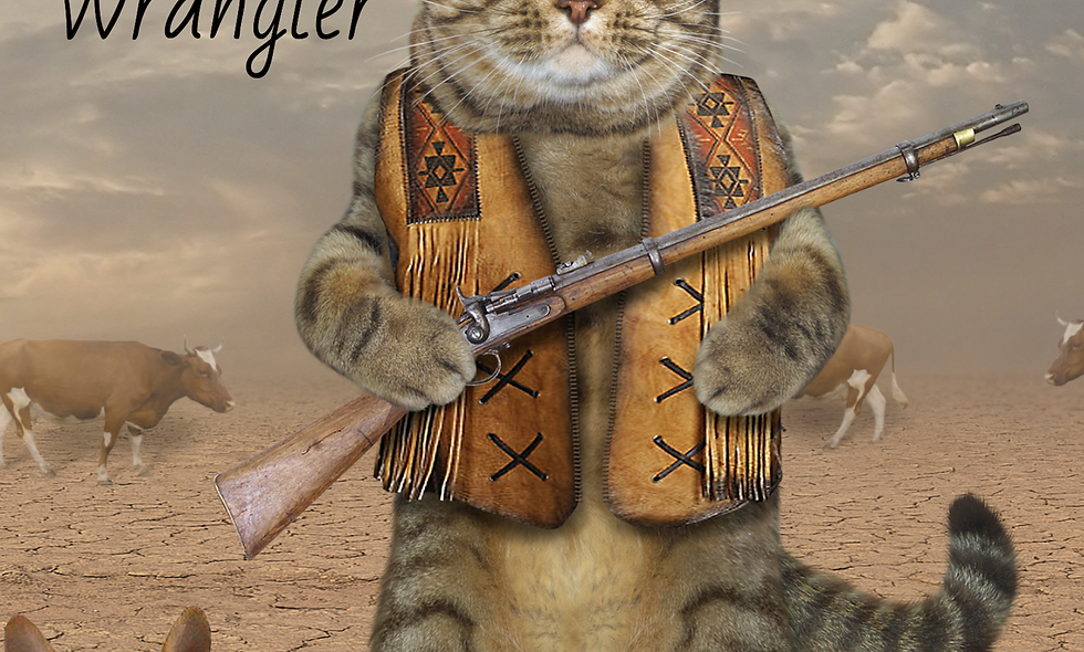 5th Dimensional Cat Wrangler