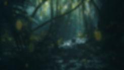 Night Forest Jungle Scene