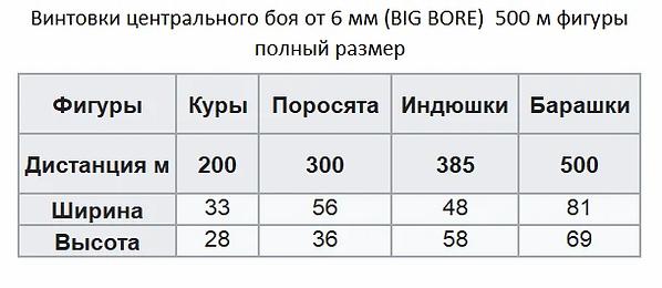 scale_2400 (1).webp