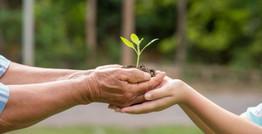Ekos| ADN Sostenible: Un aporte académico hacia un territorio inteligente y sostenible