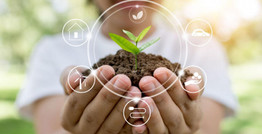 Ekos| ADN Sostenible: Desarrollo Sostenible en tiempos de Covid-19