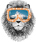 Summer Lion.jpg