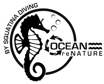 Ocean reNature transparenter Hintergrund.png