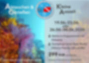SD Juniangebot 2020 website.jpg