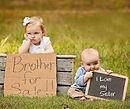 מריבות אחים