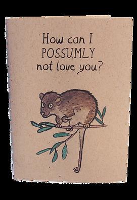 possumly.png