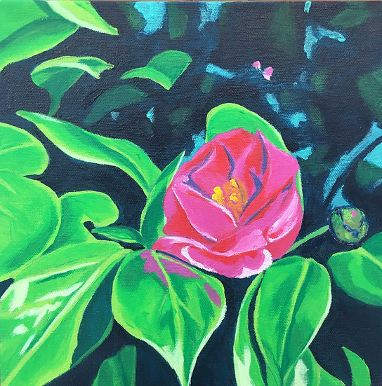 red camellia flower painting