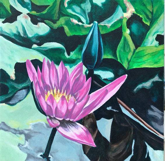 water lily painting pink