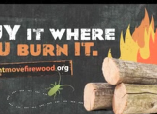 Fire Protection Services Share: Getting Smart With Firewood Movement