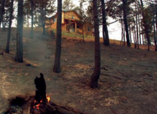 How to Protect Your Home From Wildfires with Defensible Space