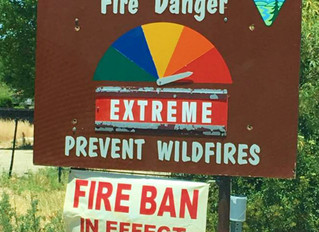 5 Things to Know for Fire Protection Services Fire Ban for Prescott National Forest