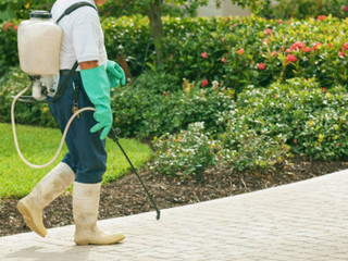 Our Weed & Pest Control Program
