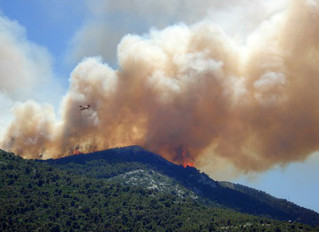 4 Fire Protection Rules to Prevent Wildfires as You Travel