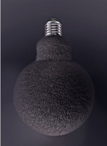 black bulb.jpg