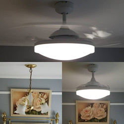 retractable fan carling electrical