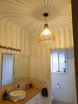 Power Room pendant light