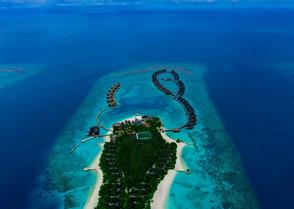 ozen-reserve-bolifushi-2jpeg