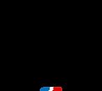 Logo Alpine F1 team