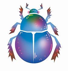 Shiny beetle.jpg