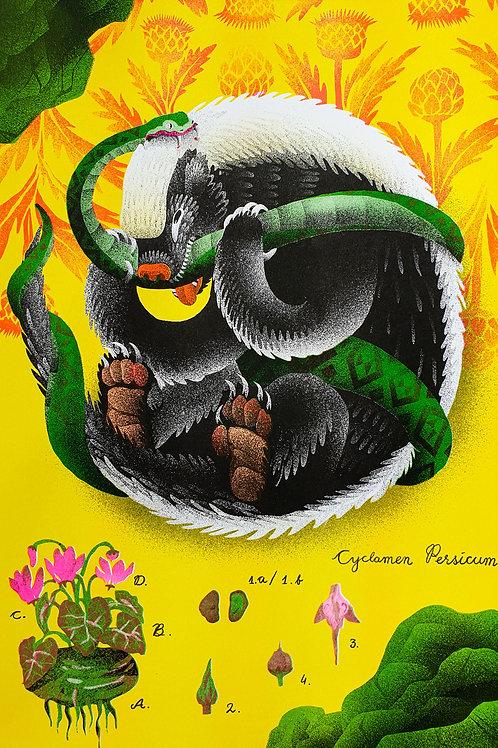 Honey Badger and a snake / Eli Babajanov