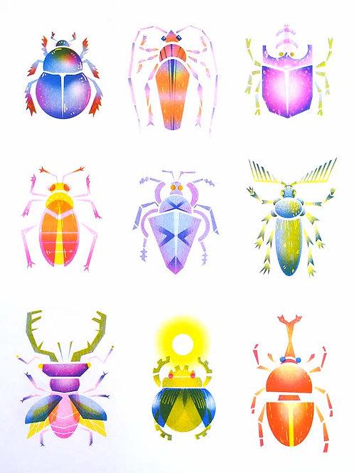 Shiny Beetles / Eli Babajanov