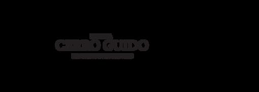 Logo CG - 2-01.png