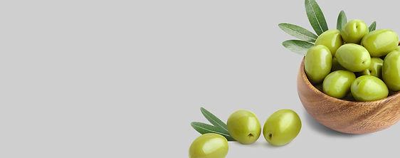 bol olives vertes picholine