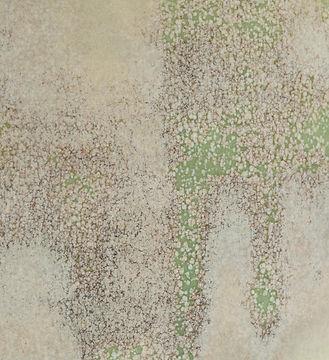 copper texture detail_kaz davis.jpg