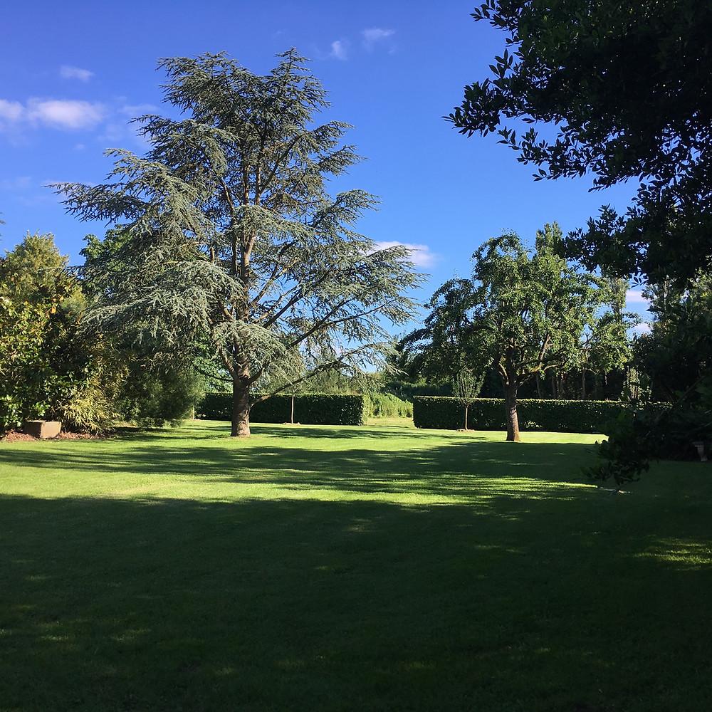 #paysagiste #gardendesign #beaujardin #printemps #jardinrégionparisienne #houdan #montfortlamaury #nogentleroi