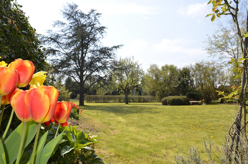 #paysagiste #gardendesign #greengarden #beaujardin #printemps #jardinrégionparisienne #houdan #montfortlamaury #nogentleroi #floraison #végétation #ouestparisjardin #creationjardin #jardinpaysager #salonjardin #terrassejardin
