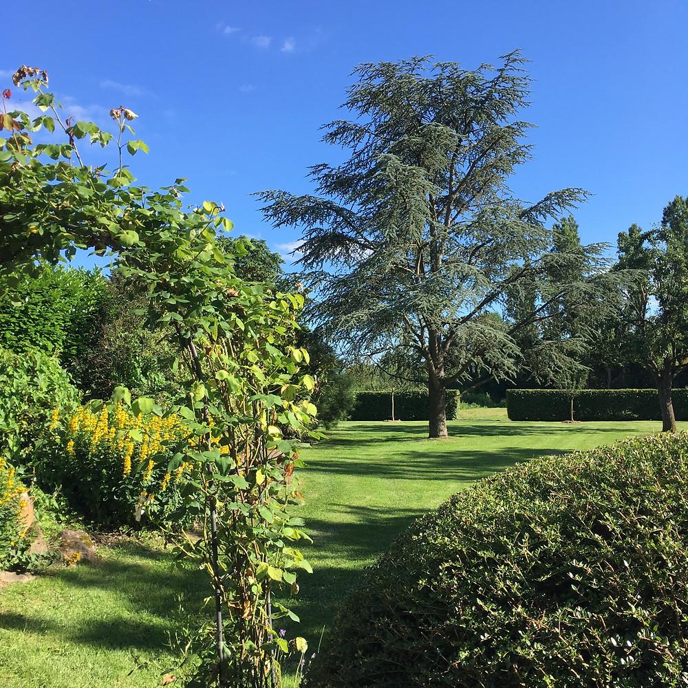 #paysagiste #gardendesign #greengarden #beaujardin #printemps #jardinrégionparisienne #houdan #montfortlamaury #nogentleroi #floraison #végétation