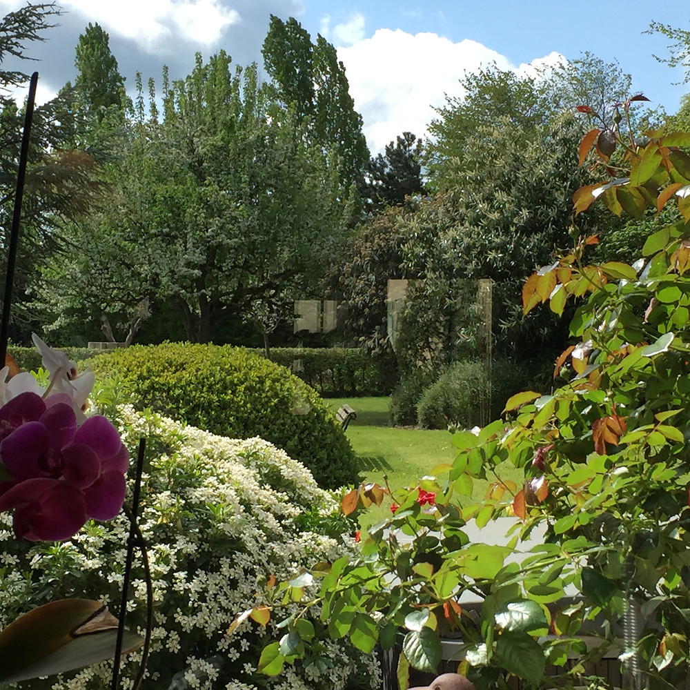 #paysagiste #gardendesign #beaujardin #printemps #jardinrégionparisienne #houdan #montfortlamaury #nogentleroi #floraison #végétation