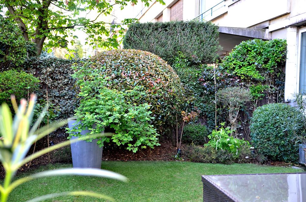 #paysagiste #gardendesign #citygarden #jardinsecret #instagardenlovers #urbangarden #urbanjungle #jardindeville #paris #creationjardin #natureinthecity #ecrindejardin #parisvert #greengarden #gardenlove #beauty #GardenGoals #garden #gardenstyle #landscapearchitecture #gardenparis #bertrandfleurypaysagiste