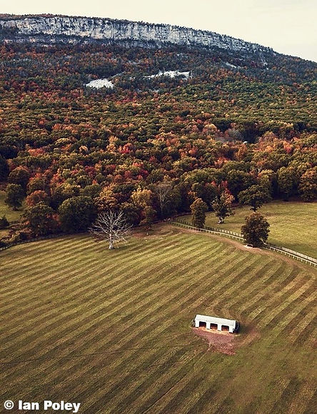 Ian Poley; MajesticView Farms; Mountain; Gardiner