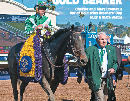 Trickmeister Brings Speed, Class, and Sire Power to New York