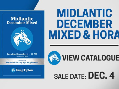 2018 Fasig Tipton December Sale