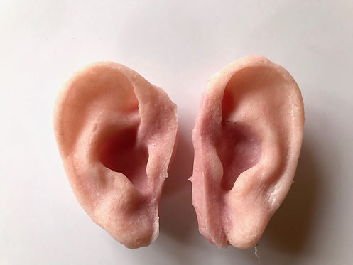 Silicone ears
