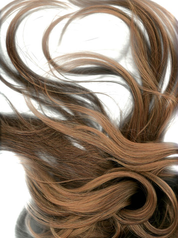 Hair Scan 1 edit.jpg