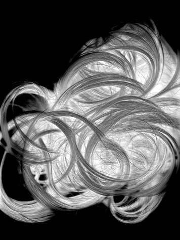 Scanography Hair 3 edit.jpg